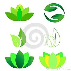 A set of Lotus flower, Ying Yang, Leaves Logo icons, green isolated vector illustration on white background. Lotus Vector, Leaf Logo, Logo Background, Lotus Flower, School Projects, Leaves, Icons, Logos, Illustration