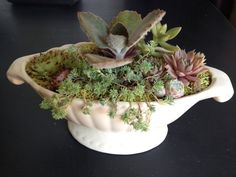 Succulent Garden Gravy Boat by LoliviaGifts on Etsy
