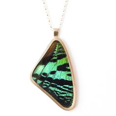 Urania Ryphaeus Necklace by Papillon Belle---- Sterling Silver, Glass, Real Butterfly Wing