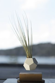 New Magnetized Planters Allow Your Garden to Levitate in the Air