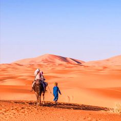Morocco Lifetime Tours : Morocco Tours, Private Desert Tours From Marrakech & Excursions From Marrakech 3 Days Trip, Desert Tour, Have A Good Night, Atlas Mountains, Marrakech, Morocco, Trek, Deserts, Hiking