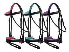 Showman ® Color padded english bridle with flash cavesson