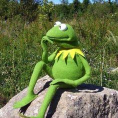 Funny Kermit Memes, Cute Memes, Funny Relatable Memes, Funny Humor, Cartoon Pics, Cute Cartoon Wallpapers, Sapo Kermit, Les Muppets, Sapo Meme