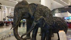 #magiaswiat #podróż #zwiedzanie #indie #blog #azja #zabytki #swiatynia #miasto #kosciół #katedra #yamuna #krsna #shiva #durga #vrindavan Indie, Durga, Shiva, Lion Sculpture, Statue, Blog, Blogging, Sculptures, Lord Shiva