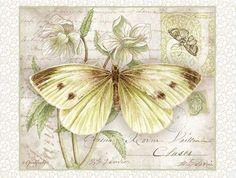 papillon vole papillon