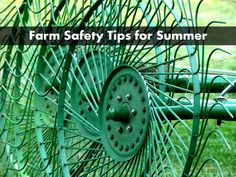 5 Simple Steps To Farm Safety This Summer