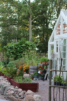 <3 greenhouse, gravel, rocks, beds, gate, and of course all the plants!