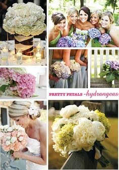 one of my favorite flowers! Hydrangeas and its many uses