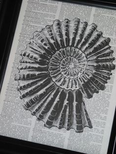 Dictionary Print  This beautiful 8 x 10 print of Shell is on a vintage dictionary page. This would be a wonderful addition to your home or a
