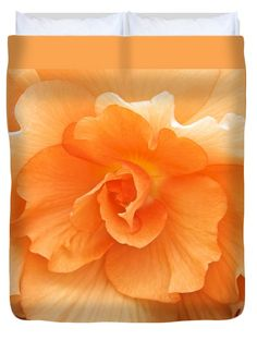 Begonia Duvet Cover featuring the photograph Begonia Beauty by Venetia Featherstone-Witty