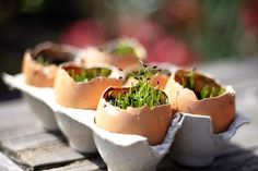 Seed starting in egg shells.  Chives make a perfect easter/spring party favor.