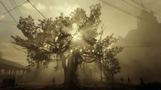 Game: Red Dead Redemption 2 System: Sony Playstation 4 Pro Impressions played and filmed by winkytwinky (winkytwinky.com) Red Dead Redemption, Playstation, Sony, Games, Flowers, Plants, Gaming, Flora, Toys