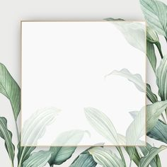 Gold frame on a tropical leaves background vector Tropical Background, Flower Background Wallpaper, Leaf Background, Flower Backgrounds, Background Patterns, Textured Background, Wallpaper Backgrounds, Background Banner, Leaves Wallpaper