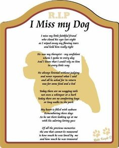 The Memorial: Check Out I Miss My Cairn Terrier Dog . (Male) Poem with Full Color Graphics - Professionally Printed onto Chromaluxe Arch Panel with Easel Back (poem for bereavement, missing my dog, memorial for dog, Plaque for Dog Pet Loss Grief, Loss Of Dog, Cairn Terrier, Terrier Dogs, Fox Terriers, I Love Dogs, Puppy Love, Dog Loss Quotes, Dog Loss Poem