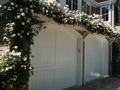 Trellis above garage door planted with pink climbing roses