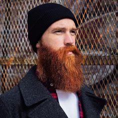 Epic ginger beard