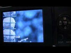 Canon Powershot SX40 HS Tutorial: Step Nineteen - A little closer to real Bokeh