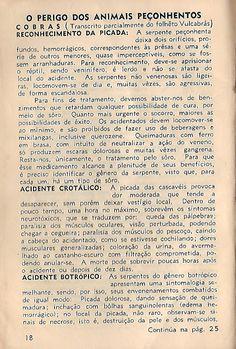 O PERIGO DOS ANIMAIS PEÇONHENTOS de 1966 - Postagem Oficina do Homem