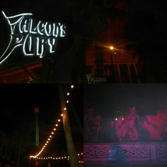 Had a great time at Howl-O-Scream in Busch Gardens Tampa in Tampa, FL with friends last night.