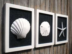 Cottage Chic Set of Beach Wall Art Bathroom by OMearasCottageCharm