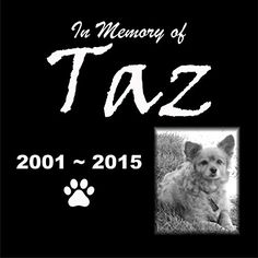 Personalised Pet Stone Memorial Marker Granite Marker Dog Cat Horse Bird Human 12 X 12 Custom Design Personalized Bloodhound * Read more  at the image link.