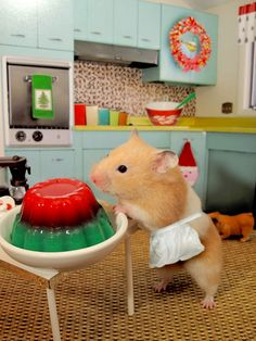 Merry Christmas from Edie the Hamster, the real Jello Mold Mistress of Brooklyn!(More of my ham-tastic photography can be found here.)