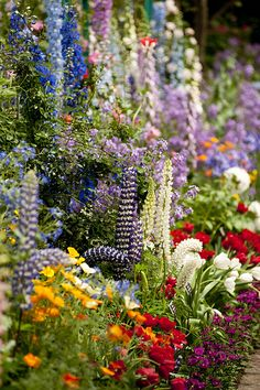Monet's Garden*-*. So want backyard fence line to look  like this, better get busy!