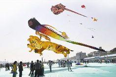 Gujarat kite festival, India