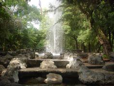 Parque Mexico, Condesa, Mexico city