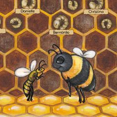 Please get behind this Kickstarter guys for an kids book about the Bees, we need to get more kids into Beekeeping.  Click on the photo to hear an interview with the author.