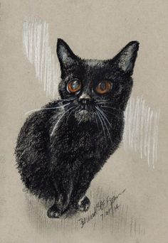 """""""Kennedy"""", white and black charcoal on gray toned paper, 5″ x 8″ © Bernadette E. Kazmarski, portrait of a rescued cat, donation made with every purchase."""