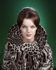 Romy Schneider. Too bad it's real fur.