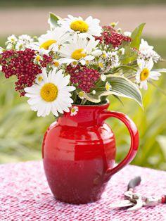 Срезанные Цветы, Свежие Цветы, Красивые Цветы, Цветочный Сад, Простые Цветы, Экзотические Цветы, Белые Цветы, Цветоводство, Маки