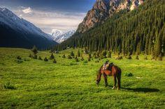 Con sus casitas de madera de aire siberiano, sus yurtas y sus paisajes, Kirguistán es un destino emergente de Asia Central