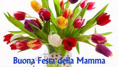 Mothers Day Images, Italian Memes, Holiday, Plants, Facebook, Cheers, Spring, Mother's Day, Vacations
