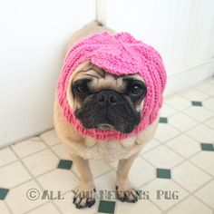 How cute would this be for a Halloween Pet Costume? Custom Cabbie Dog Hat by jessicalynneart on Etsy