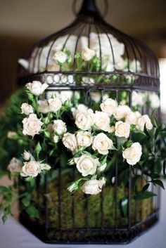 Flowers in a Birdcage for decorating or table centerpieces
