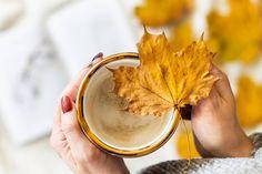 """Ewelina ● COFFEE & FLATLAY on Instagram: """"All I need today.. ☕ ściskam Was ciepło na dobry początek tygodnia 😘 ____________________________  #coffeeandseasons #coffeecup…"""" Coffee Flatlay, Fall Recipes, Peanut Butter, Autumn, Instagram, Food, Fall, Meals"""