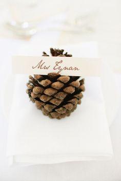 Pine cones: http://www.stylemepretty.com/2015/06/30/5-unique-place-card-ideas/: