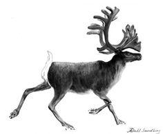 Reindeer Tattoo, Diy Tattoo, Christmas Traditions, Interior Design Living Room, Animal Kingdom, Design Trends, Cool Tattoos, Scandinavian, Moose Art
