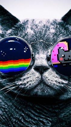 Ed Sheeran - Perfect Duet (with Beyoncé) Nyan Cat, Wallpaper Iphone Disney, Cat Wallpaper, Cute Wallpaper Backgrounds, Wallpaper Wallpapers, Aesthetic Backgrounds, Aesthetic Wallpapers, Super Cat, Sketchbook Inspiration