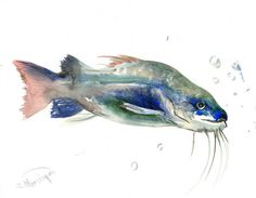 Catfish, Original watercolor painting, 14 X 11 in, fish lover art, fish wall painting, fisher, restaurant
