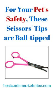 The TINY TRIM ball-tipped scissors for small pet grooming is perfect to...continue reading by clicking here --> http://bestandsmartchoice.com/2015/09/for-your-pets-safety-these-scissorss-tips-are-ball-tipped/