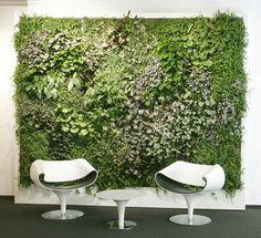 Live Enviro-Wall as a panel of wall art