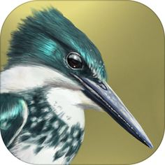 iBird Lite Guide to Birds by Mitch Waite Group