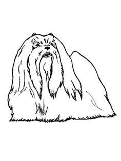 #lostdog KLOWIE a female white maltese poodle mix #maltipoo last seen 3-18-13 Houston TX 77083