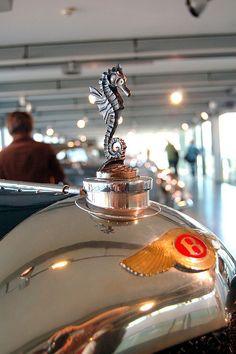 Seahorse hood ornament,