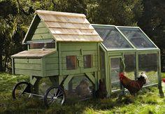 DIY Chicken Coops - Bob Vila