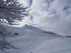 Groomed slopes in Oasi Zegna, #Italy. www.oasizegna.com