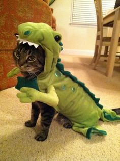 """What's wrong with just dressing up and having fun?"" 